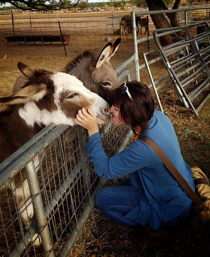 Mini donkey kiss